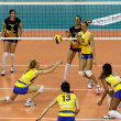 Volleyball - Photo