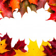 Frame of red and yellow maple leaves — Stock Photo