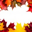 Frame of red and yellow maple leaves — Stock Photo #11485375