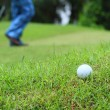 Golf ball on green — Stock Photo