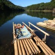 Bamboo raft — Stock Photo #12056961
