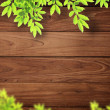 Stock Photo: Wood and leaf