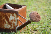 Grunge watering can — Stock Photo