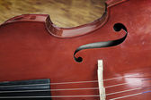 Old Viola — Stock Photo