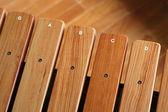 Wooden xylophone — Stockfoto