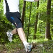 Stock Photo: Trail runner