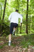 Trail running — Stock Photo