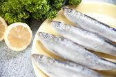 Sardines — Stock Photo