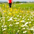 Spring time running — Stock Photo #11235867
