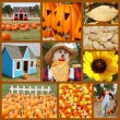 Fall collage - Stock Photo