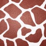 Giraffe — Stock Photo #11245905