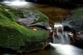водопад в дремучем лесу в таиланде — Стоковое фото