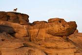 Sam panbok rock field, Grand canyon in Thailand — Stock Photo