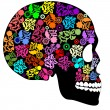 Skull in rainbow on black background - Stock Vector