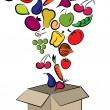 Fruits and vegetables packed into box - Stock Vector