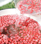 čerstvé maliny ve vodě — Stock fotografie