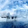 Penguins on ice floe — Foto Stock