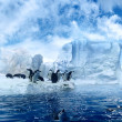 Penguins on ice floe — Stok fotoğraf