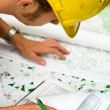 Builder checking plans — Stock Photo