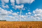 Wind turbines in wheat field — Stock Photo