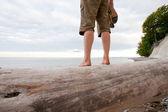 海滩 outlook — 图库照片