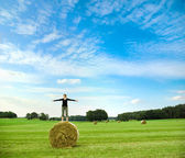 Standing on a roll of hay — Stock Photo