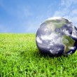 Earth in beautiful green grass — Stock Photo