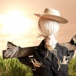 Scarecrow in corn field at sunrise — Stock Photo #11458889