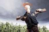 Scarecrow in corn field on a cloudy day — Stock Photo