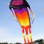 Giant Kite — Stock Photo