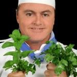 Herb Chef 1 — Stock Photo #11568845