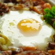 Corned Beef Hash With Egg — Stock Photo #11569898