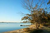 Broadwater gold coast australia — Zdjęcie stockowe