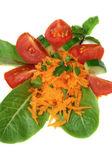 胡萝卜和黄瓜沙拉 — 图库照片