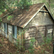 Old Log Cabin 2 — Stock Photo #11570658