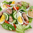 Tuna And Egg Salad 1 — Stock Photo