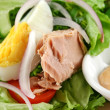 Egg And Tuna Salad — Stock Photo