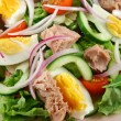 Tossed Tuna And Egg Salad — Stock Photo