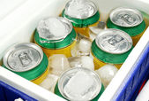 Drink Cooler 3 — Stock Photo