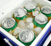 Drinks Cooler — Stock Photo