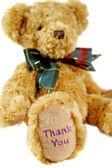 Thank You Teddy 2 — Stock Photo