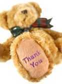 Thank You Teddy — Stock Photo
