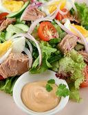 Trempette et salade de thon — Photo