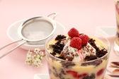 Chocolate Trifle — Stock Photo