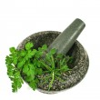 Mortar And Pestle with Fresh Herbs — Stock Photo #11778350
