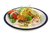 Carrot And Tuna Patties 2 — Stock Photo