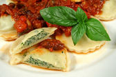Delicious Chicken And Spinach Ravioli — Stock Photo