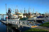 Shrimp and Fishing fleet at dock — Stock Photo