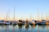 Marina Boats — Stock Photo