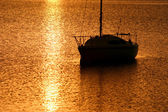 Su üzerinde güneş — Stok fotoğraf